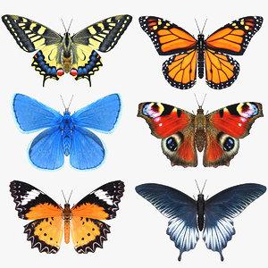 3D model butterfly set