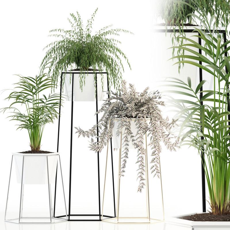 plants 88 3D