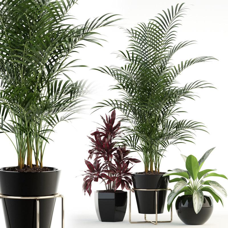 3D model plants 89