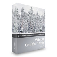 winter conifer trees volume model
