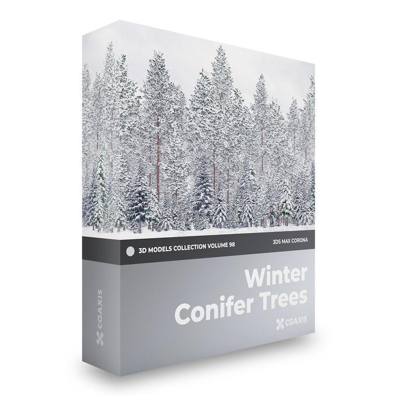 3D winter conifer trees volume
