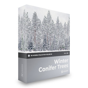 3D winter conifer trees volume model