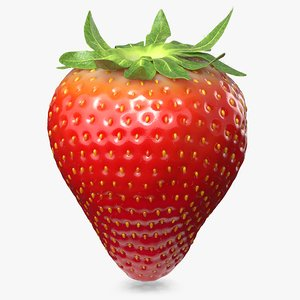 strawberry real fur 3D model
