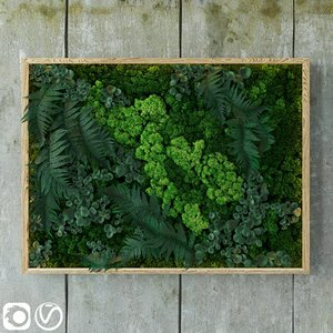 fytowall moss fern 3D