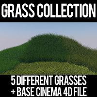 grasses 3D model