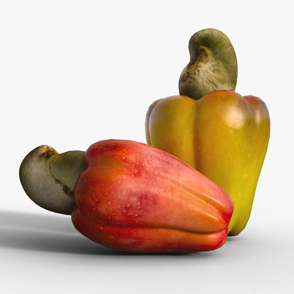 cashew fruit nut 3D
