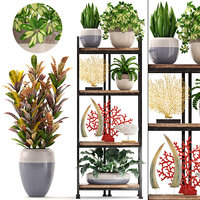 3D shelf decor tropical plants