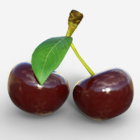 realistic cherry fruit model