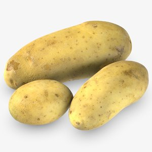 3D raw potatoes model