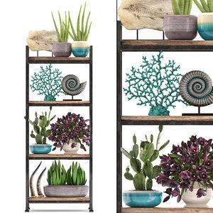 shelf decor tropical plants 3D model