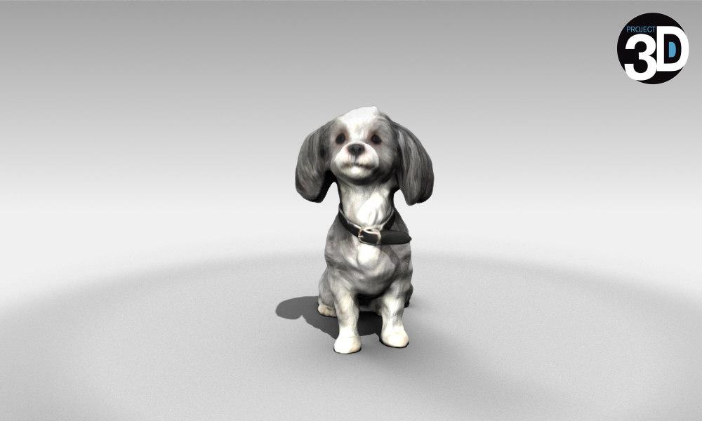 scanned poodle 3D