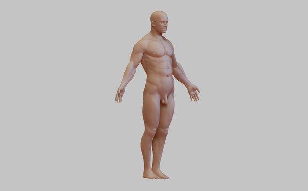 anatomy man 3D model
