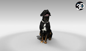 3D scanned rottweiler