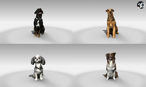 3D scanned dogs - model