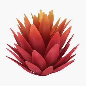 3D model red agave