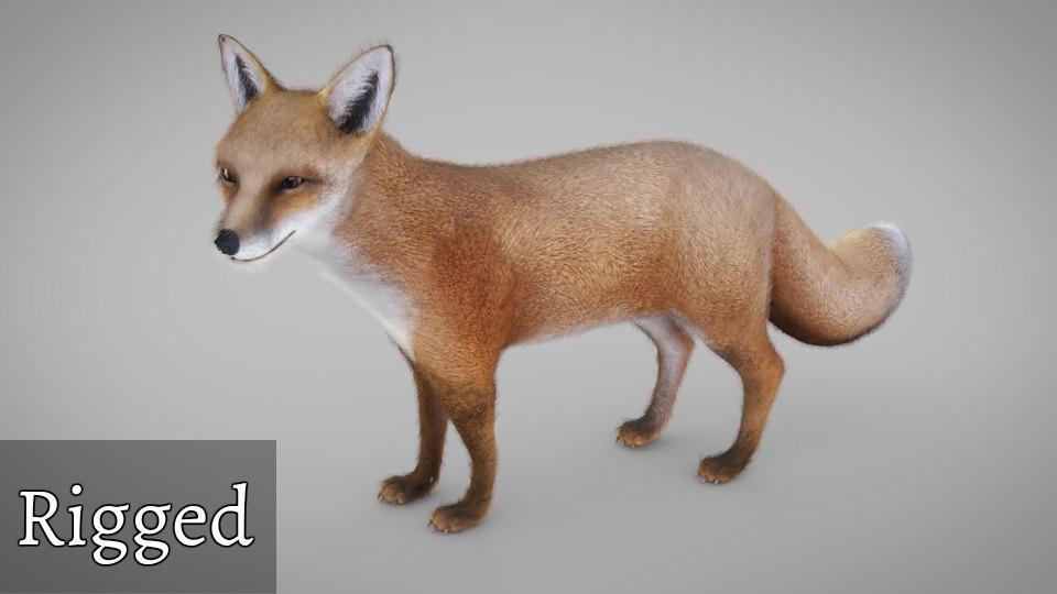 fox fur included 3D