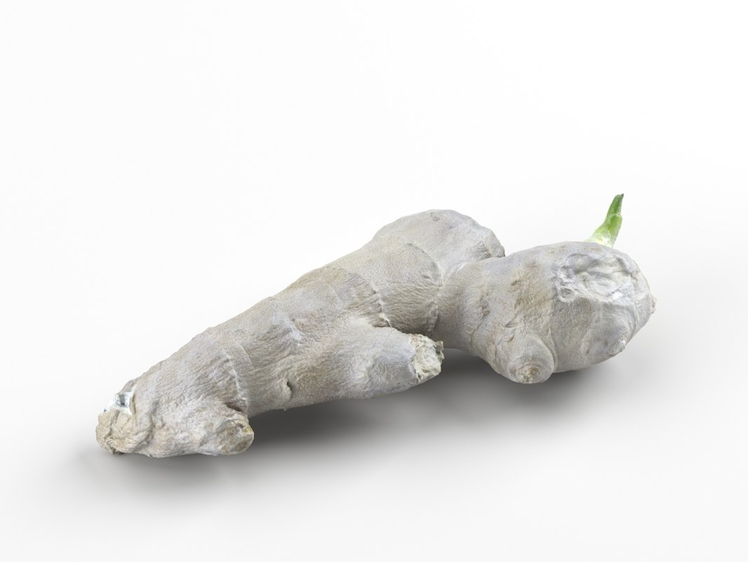 photorealistic scanned ginger 3D model