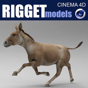 donkey beast animal 3D