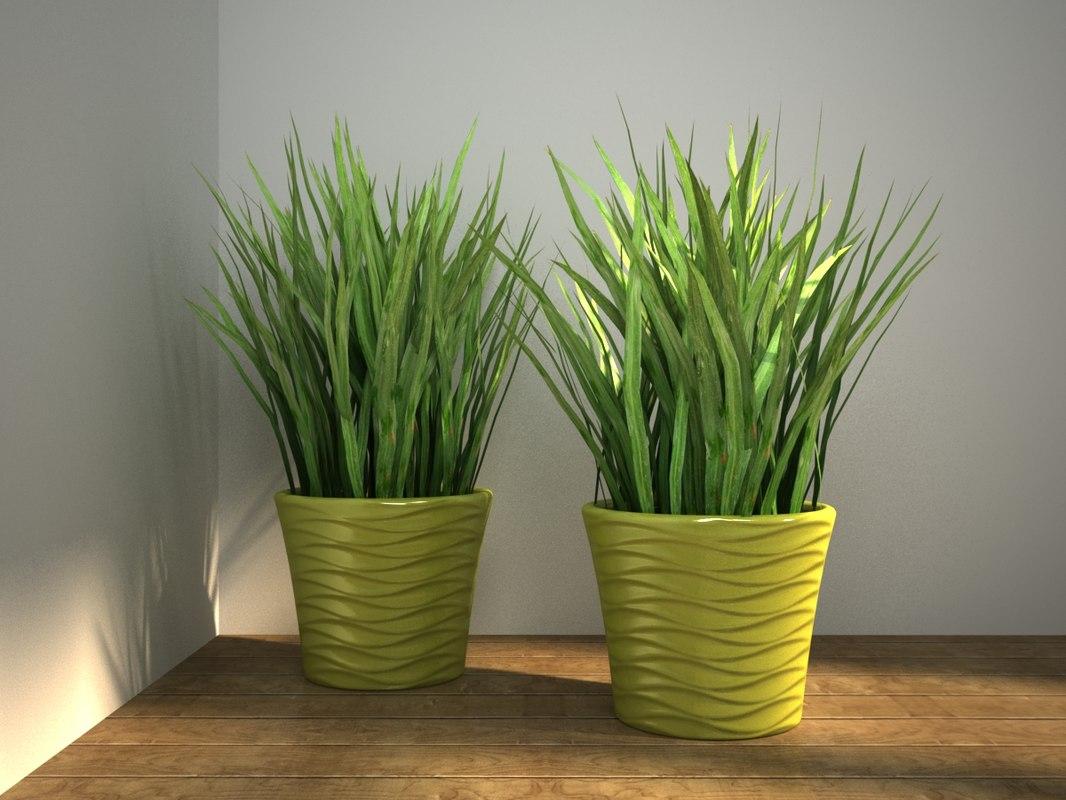 3D grass pot model