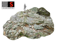3D jungle rock ground 16k model