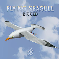 3D flying seagull rigged model