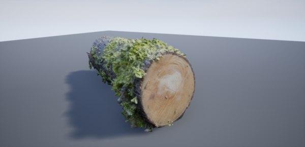 3D old log scanned