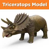 realistic triceratops ready 3D model