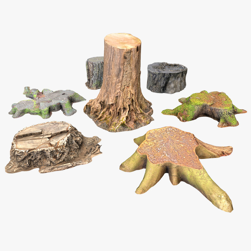 7 tree stump 3D model