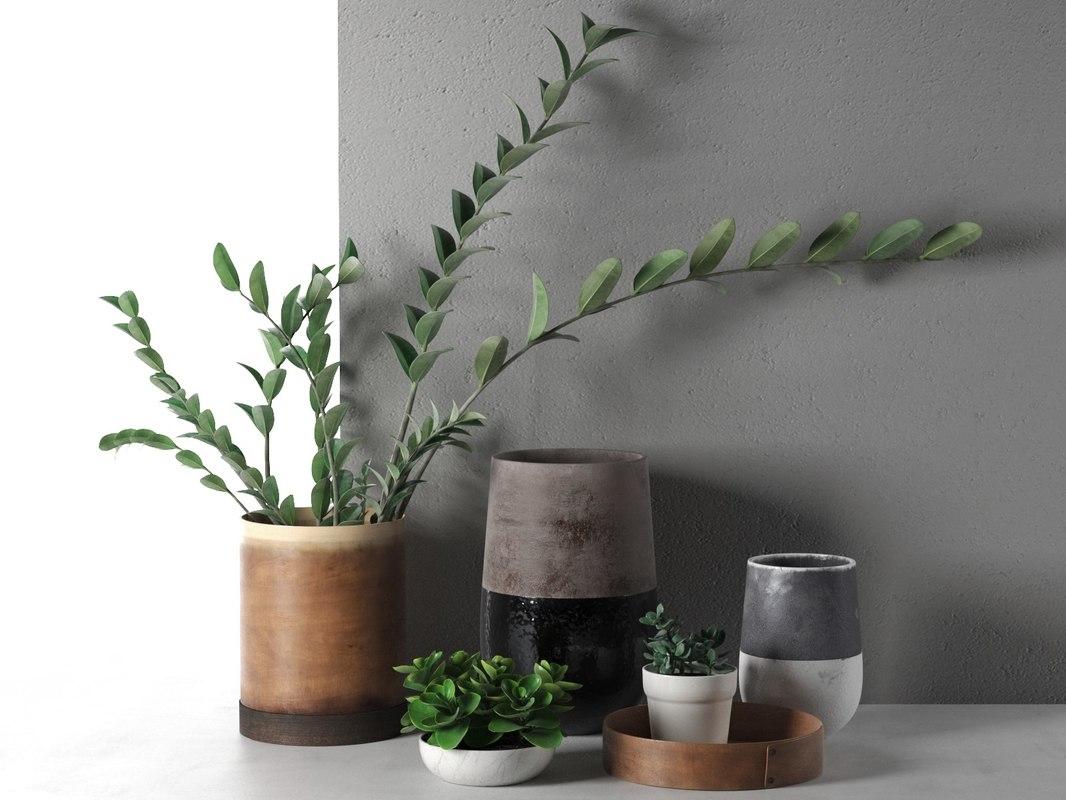 plants vases model