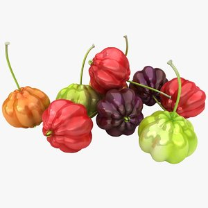 surinam cherries 3D model