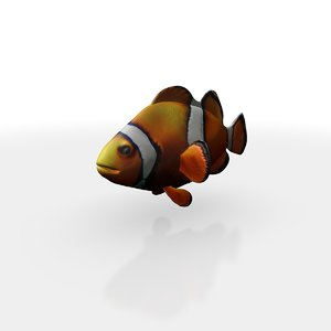 clown fish model