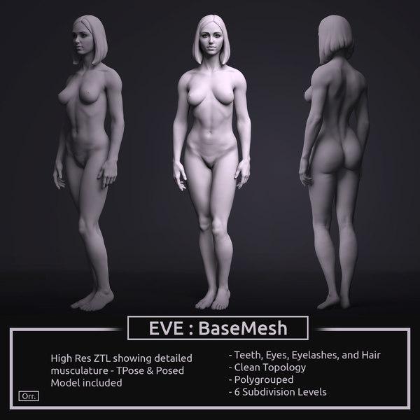 3D zbrush female anatomy basemesh