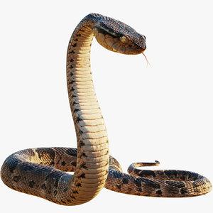 3D model realistic snake