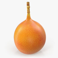 exotic fruit granadilla model