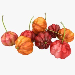3D model surinam cherries color 2
