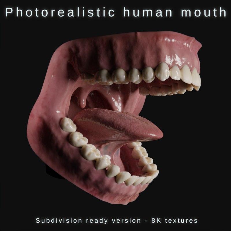 3d Human Mouth Teeth Model Turbosquid 1278134