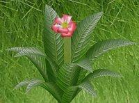 big leaves flower 3D model