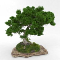 3D stone grass tree bonsai