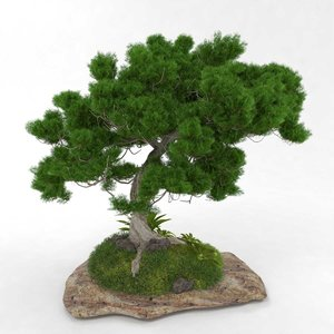 3D stone grass tree bonsai