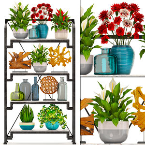 3D rack decor figurines plants