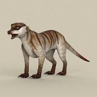 3D ready meerkat