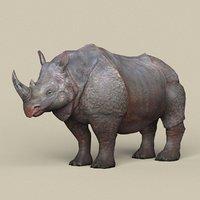 ready rhinoceros 3D model