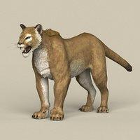 3D model ready puma