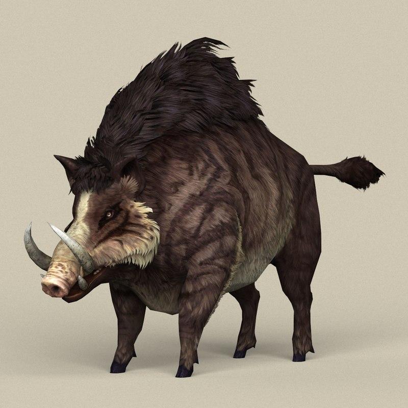 3D ready fantasy boar