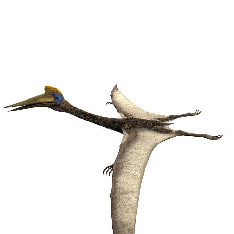 quetzalcoatlus unreal asset 3D model