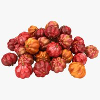 3D surinam cherries pile color model