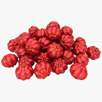 3D surinam cherries pile color