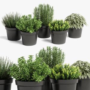 plants set 05 3D model