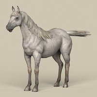 3D ready white horse