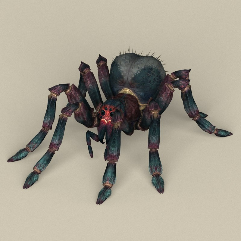 3D ready spider model